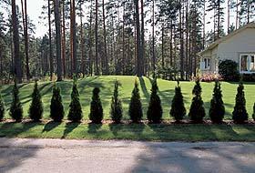 Ландшафтный дизайн на Урале